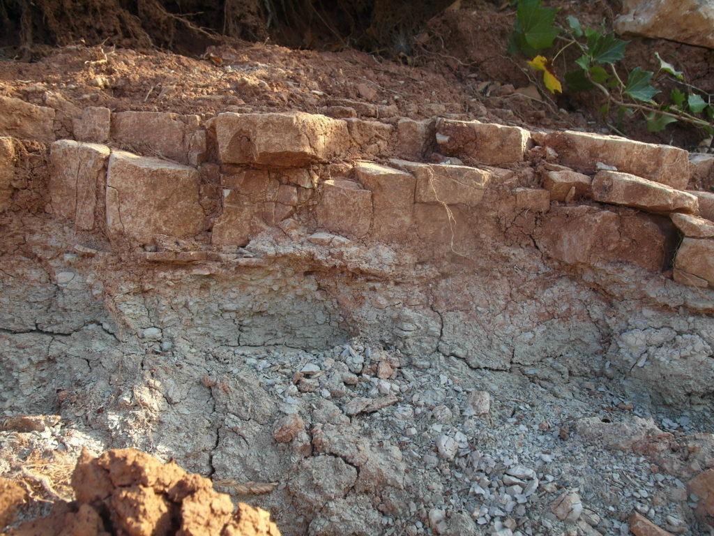 Affleurement marno-calcaire de l'Ostenberg-Froehn
